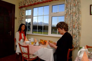 Wayside Bed and Breakfast - Killarney - Breakfast